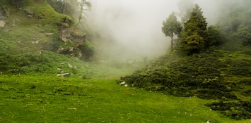 Experience The Cultural Enigma Of Kasol: The Mini-Israel Of India