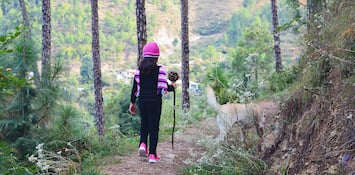 Your Guide To Trekking And Skiing Around Shimla