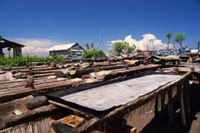 Full-day Royal Karangasem Heritage Tour (Private)