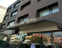 The Purple Leaf Hotel in Hyderabad